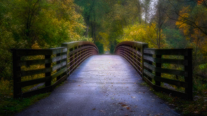 photo of a bridge in a forest with orton effect
