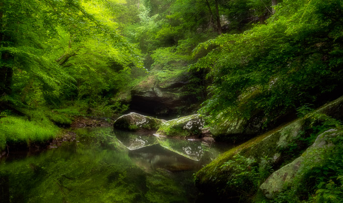 photo of a small lake in a forest with orton effect