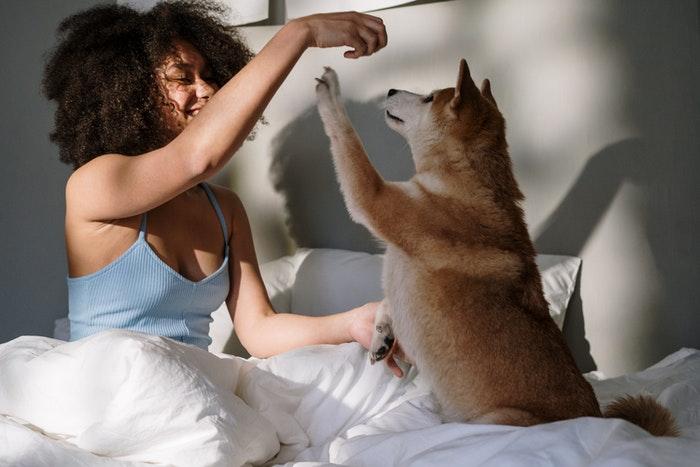 Uma menina brincando com um filhote de cachorro em uma cama