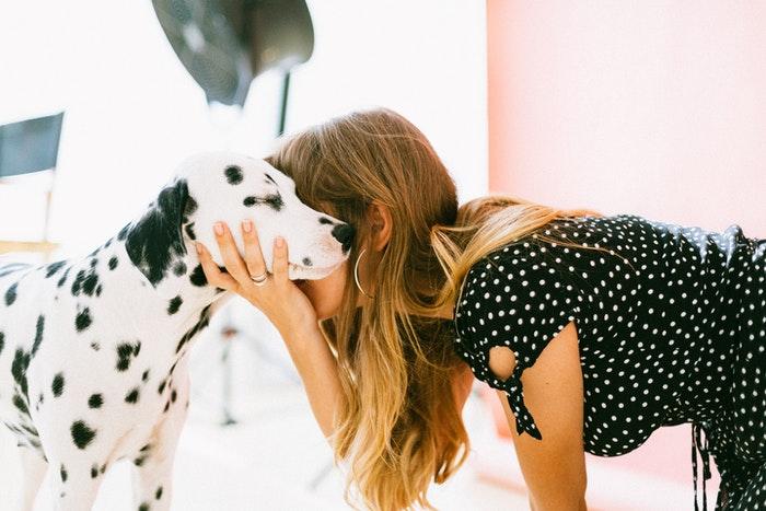 Uma menina abraçando um cachorro dálmata