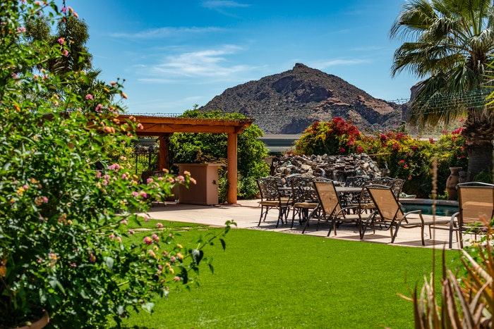 A garden with a mountain in the background