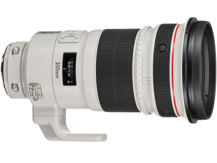 300 mm lens for birds photography