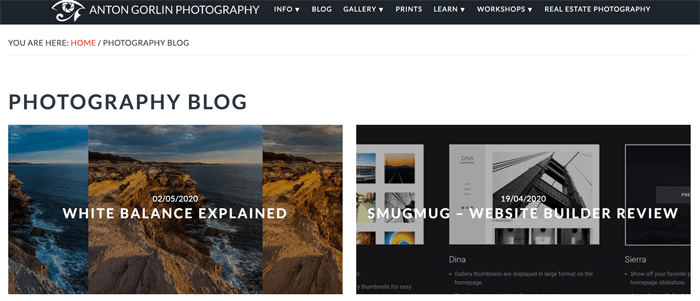 Screenshot of Anton Gorlin photography blog homepage