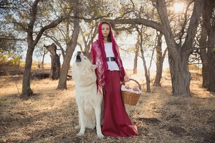 Retrato atmosférico de uma menina em uma capa vermelha ao lado de um lobo