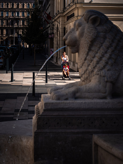 A lion fountain in Budapest