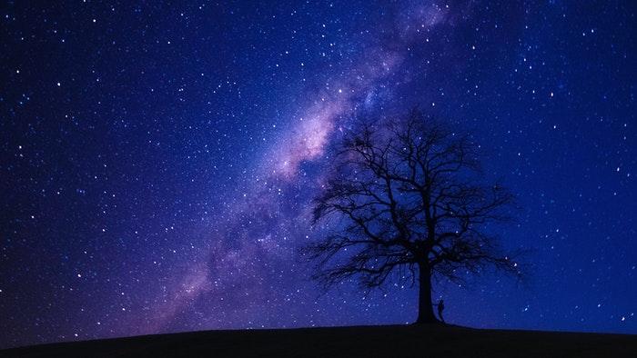 Foto impressionante de astrofotografia de um céu estrelado sobre a silhueta de uma árvore