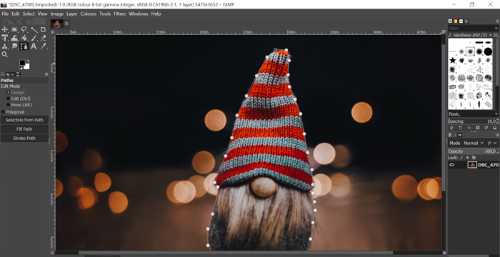 screenshot showing how to cut out an image in Gimp using path tool