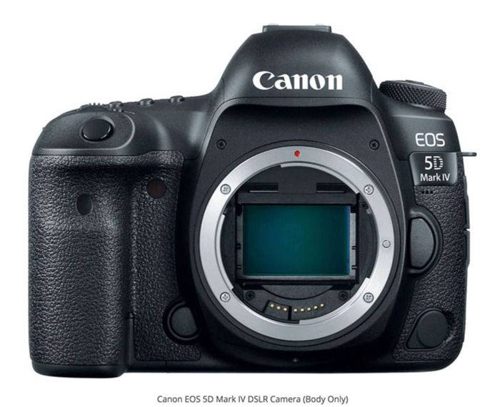 Canon 5D Mark IV best camera for real estate photography