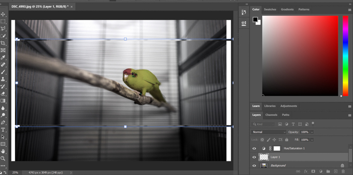 A screenshot of adding a glitch effect in Photoshop