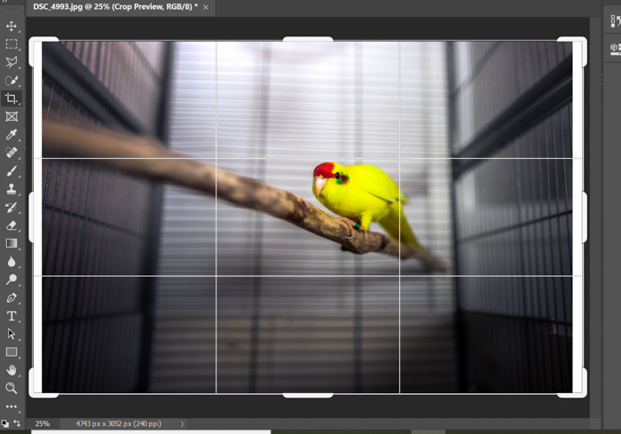 Uma captura de tela de como adicionar um efeito de falha a uma foto no Photoshop