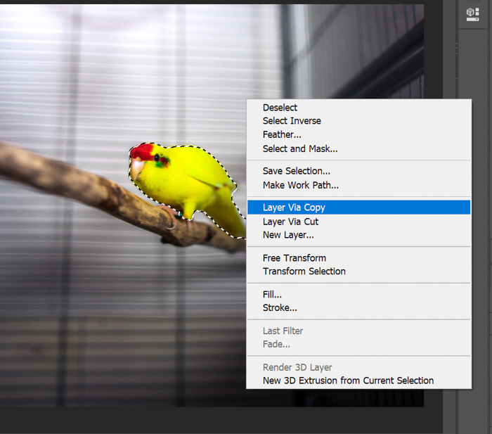 A screenshot of creating a new layer in Photoshop