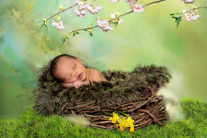 Newborn baby in a basket surrounded by forest themed props