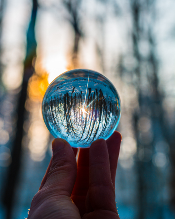 A person holding a lensball to a forest to create a cool upside down photography effect