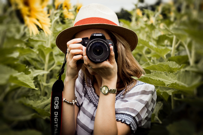 woman in a sunflower field looking into a DSLR camera