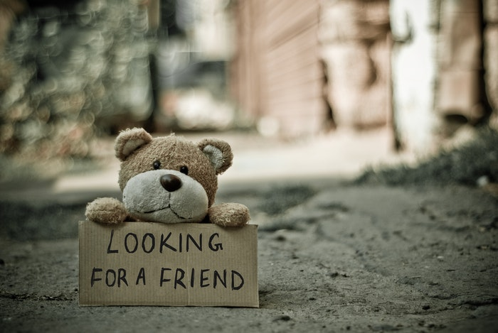 Cute toy photography of a teddy bear holding a sign saying 'looking for a friend'