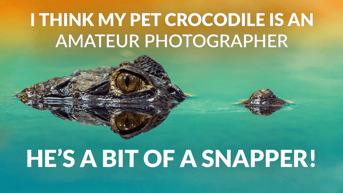Photography joke over a photo of a crocodile in a lake