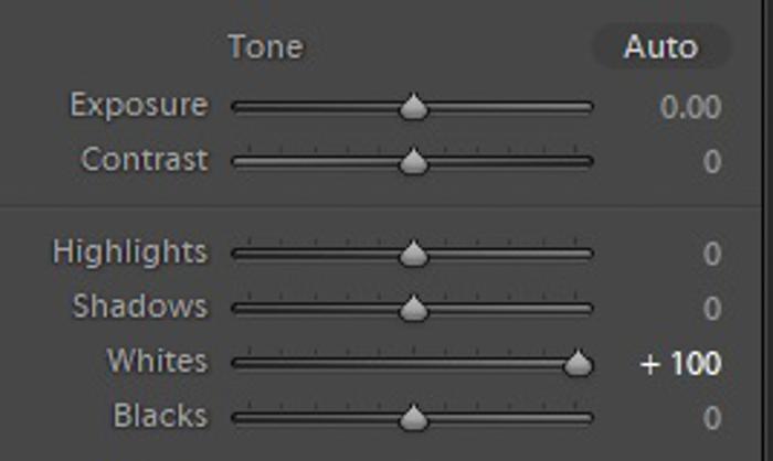 Screenshot of Lightroom develop module
