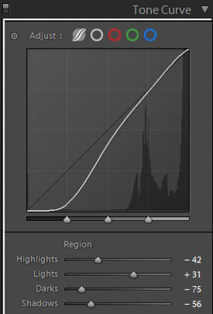 Screenshot of Lightroom Tone Curve