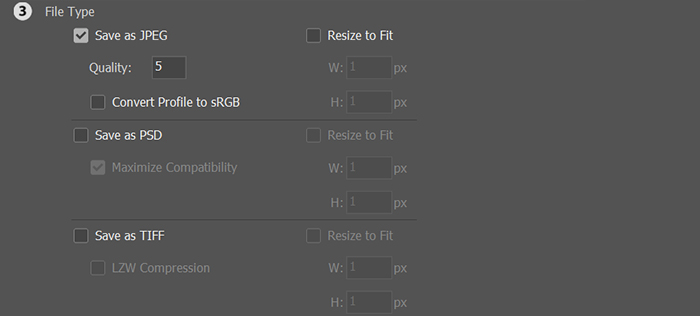 A screenshot of choosing file type for batch resizing images in Photoshop