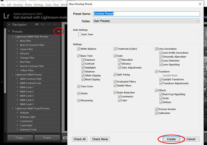 Screenshot of Lightroom black and white settings