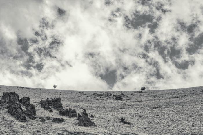 gambar hitam putih dari bidikan lanskap dengan filter ultraviolet