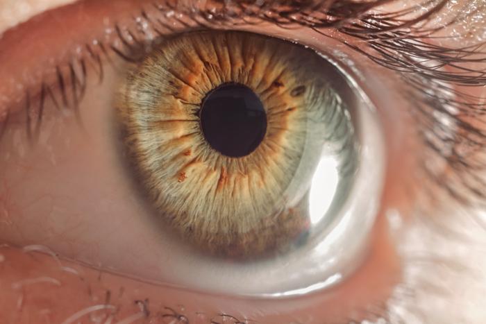 μακρο εικόνα του φακού του ανθρώπινου ματιού