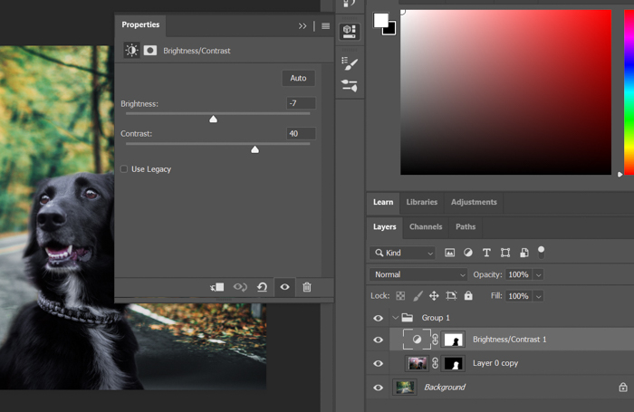 Screenshot of adjusting brightness and contrast in Photoshop