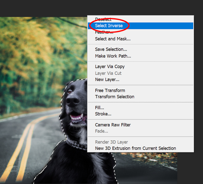 Screenshot of using select inverse in Photoshop