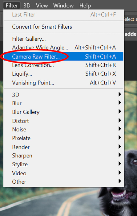 Screenshot of selecting camera raw filter in Photoshop