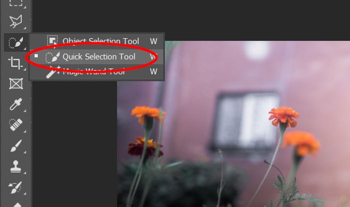 Screenshot of choosing the quick selection tool in Photoshop