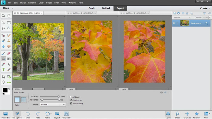 a screenshot of adobe elements photo editing software with quick, guided, and expert modes