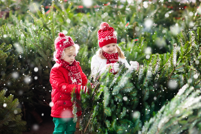 Christmas portrait of two little girls playing with christmas trees