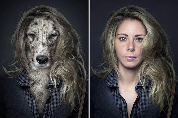 Foto do animal de estimação com a ideia de um díptico de um cachorro e seu dono com uma aparência semelhante