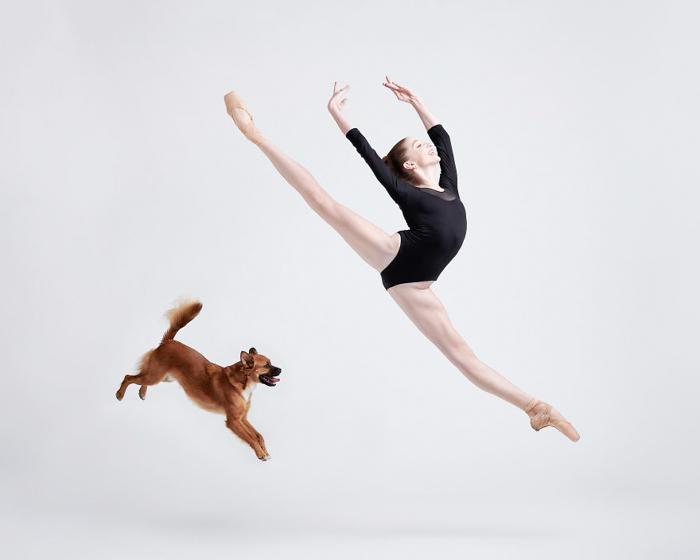 Uma bailarina pulando ao lado de um cachorrinho