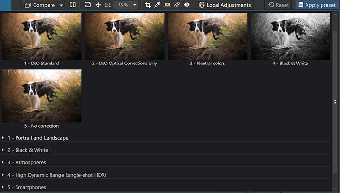 Imagem de predefinições no software de edição DxO PhotoLab 4