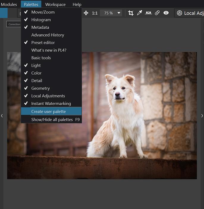 Edição com o software de aprimoramento de fotos Dxo PhotoLab 4