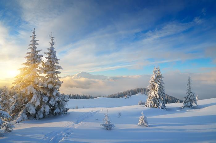 Bela paisagem coberta de neve