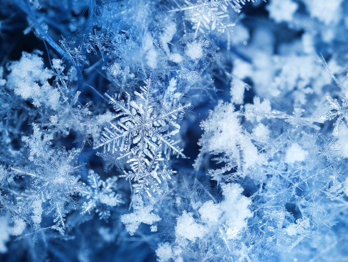 A photo of snowflake covered in fresh snow and breeze at winter.