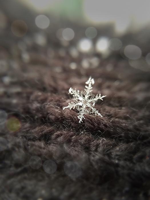 Snowflake macro photography with bokeh.