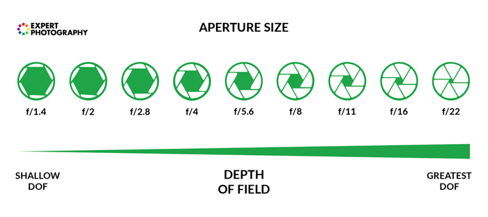 A diagram showing how aperture size, f stop and depth of field work together