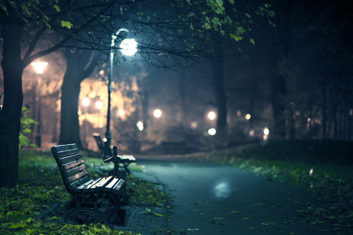 A park scene at night