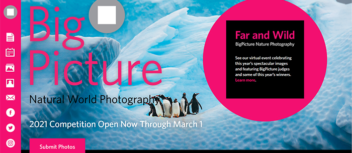 Prêmio BigPicture Natural World Photography