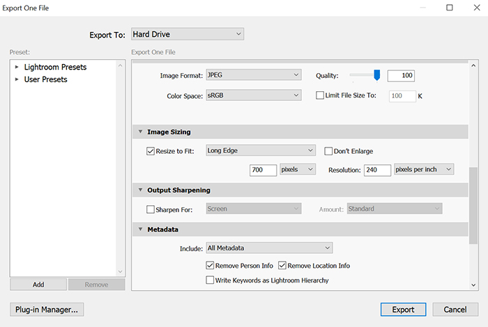 Exporting panel of a photo editing software