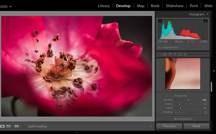 Sharpening tool of Adobe Lightroom photo editing software