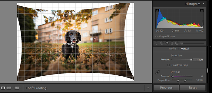 A screenshot of editing photos with Perspective correction tool of Adobe Lightroom