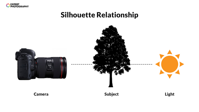 A diagram explaining how silhouette photography works