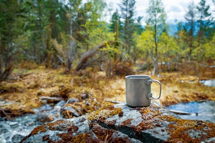 Uma fotografia de natureza morta de viagem de uma caneca de acampamento e uma floresta