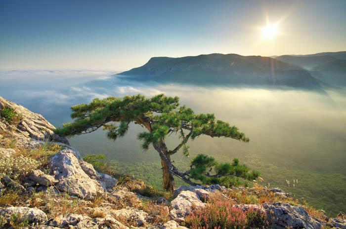 Uma imagem de fotografia de viagem de uma paisagem enevoada e um nascer do sol.