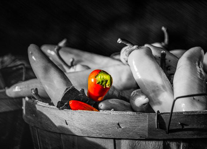 Pimentas parciais pretas e brancas