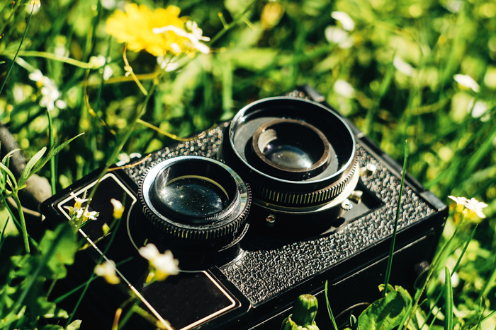 Imagem de uma câmera de filme duplo reflex entre flores e grama